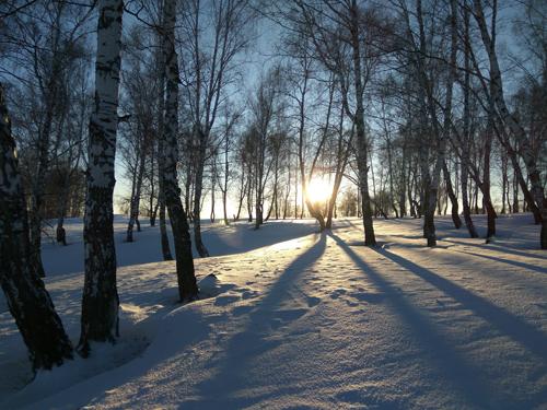 АнастасияПушкарева_Красота родной земли_ Зимний вечер
